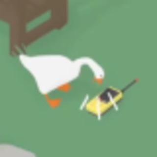 Sarah Lim's avatar