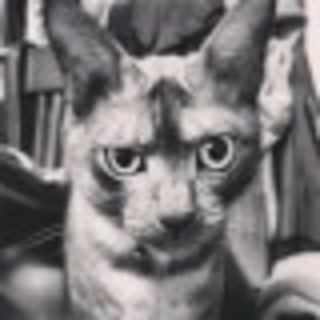 Georgio Wan's avatar